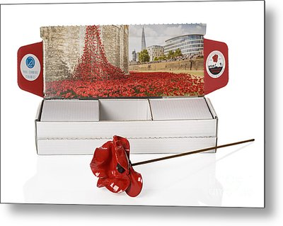 Blood Swept Lands And Seas Of Red Metal Print