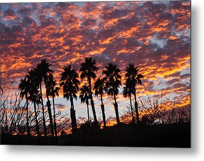 Bloody Sunset Over The Desert Metal Print by Jay Milo