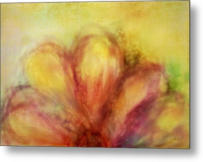 Bloom  Metal Print by Ann Powell
