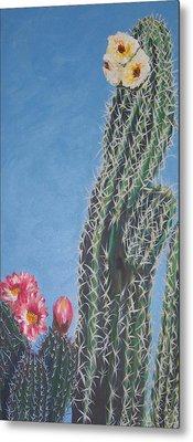 Bloomin Cactus Metal Print by Marcia Weller-Wenbert