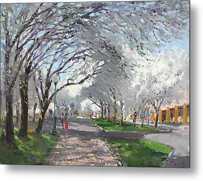 Blooming In Niagara Park Metal Print by Ylli Haruni