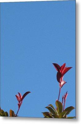 Blooming Leaves Metal Print