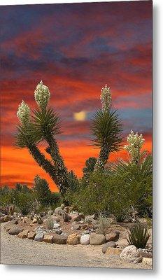 Full Blooming Yucca Metal Print