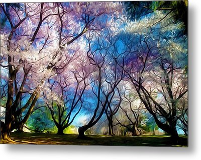 Blossom Cherry Trees Over Spring Sky Metal Print by Lanjee Chee