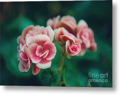 Blossom Metal Print by Yew Kwang