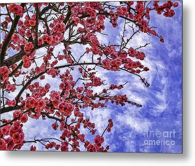 Blossoming Metal Print by Nancy Marie Ricketts