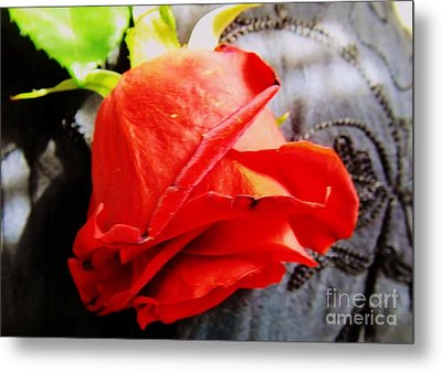 Metal Print featuring the photograph Blossoming Red by Robyn King