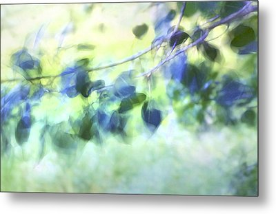 Blowin' In The Wind Metal Print by Theresa Tahara