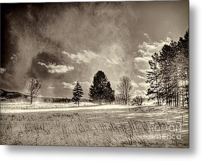 Blowing Snow Canaan Valley Metal Print by Dan Friend