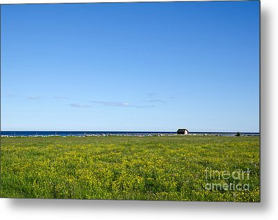 Metal Print featuring the photograph Blue And Yellow Landscape by Kennerth and Birgitta Kullman