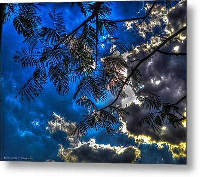 Metal Print featuring the photograph Blue And Yellow Skies by Ross Henton