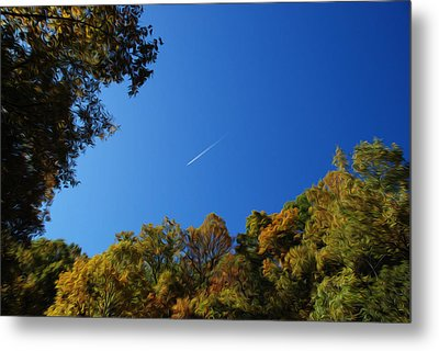 Metal Print featuring the photograph Blue Autumn Skies by Kelvin Booker