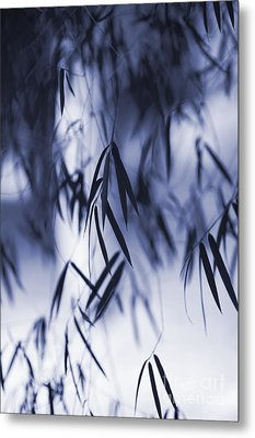 Blue Bamboo Metal Print by Tim Gainey
