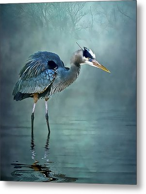 Metal Print featuring the photograph Blue Bayou by Brian Tarr