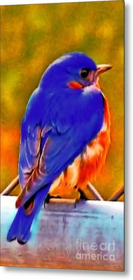 Blue Beauty 2013 Metal Print