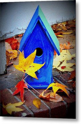 Metal Print featuring the photograph Blue Bird House by Rodney Lee Williams
