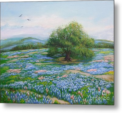 Blue Bonnet Field Metal Print