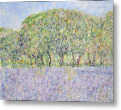 Blue Bonnets  Field In  Texas Metal Print