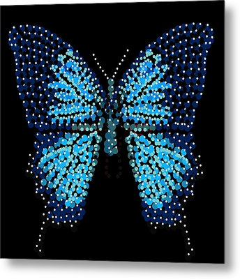 Blue Butterfly Black Background Metal Print by R  Allen Swezey