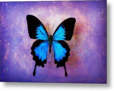 Blue Butterfly Dreams Metal Print
