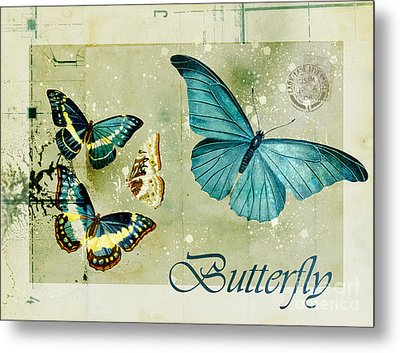 Blue Butterfly - S55c01 Metal Print by Variance Collections