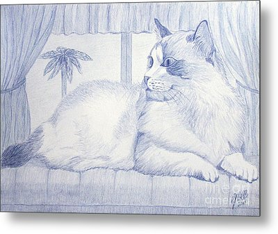Blue Cat Metal Print by Cybele Chaves