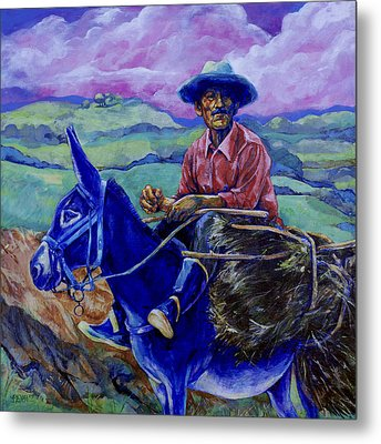 Blue Donkey Metal Print by Derrick Higgins