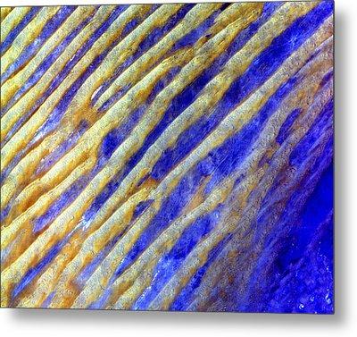 Blue Dunes Metal Print by Adam Romanowicz