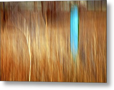 Blue Fencepost Metal Print by Theresa Tahara