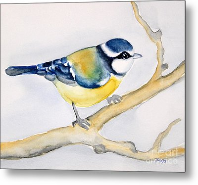 Blue Finch Metal Print by Inese Poga