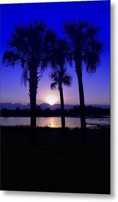 Metal Print featuring the photograph Blue Florida Sunrise by Susan D Moody