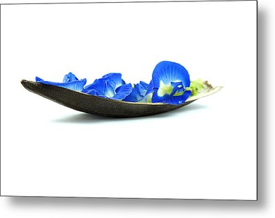 Blue Flower Boat Metal Print by Aged Pixel