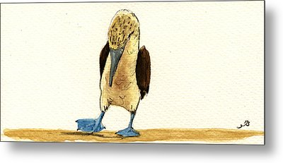 Blue Footed Booby Metal Print by Juan  Bosco