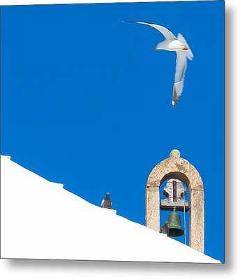 Blue Gull Metal Print
