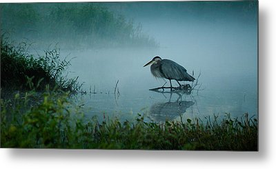 Blue Heron Morning Metal Print