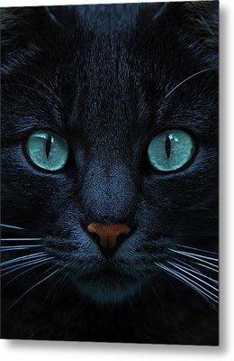 Blue Is The Night Metal Print by Joachim G Pinkawa