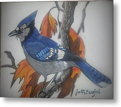 Blue Jay At Fall Metal Print by Joetta Beauford