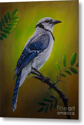 Blue Jay Painting Metal Print by Zina Stromberg