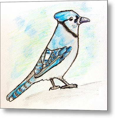 Blue Jay Metal Print by Pati Photography