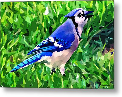 Blue Jay Metal Print by Stephen Younts