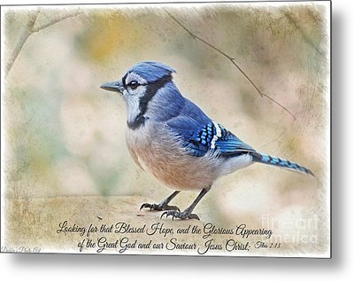 Blue Jay With Verse Metal Print by Debbie Portwood