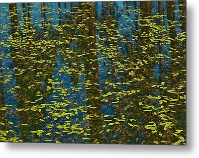 Metal Print featuring the photograph Blue Lake Reflections by Sherri Meyer