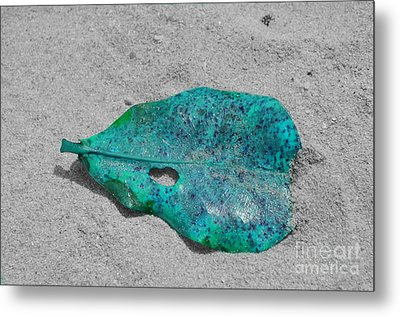 Blue Leaf Metal Print by Michelle Meenawong