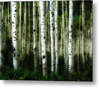 Metal Print featuring the photograph Blue Mood Aspens I by Lanita Williams