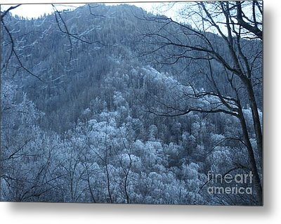 Blue Mountain Metal Print by Jeanne Forsythe