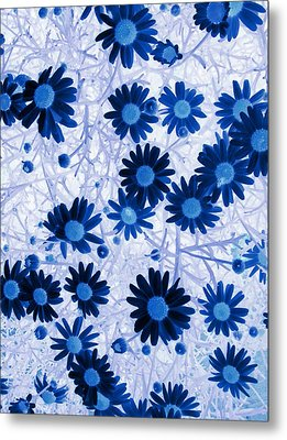Metal Print featuring the digital art Blue Mystical Daisies  by Sandra Foster