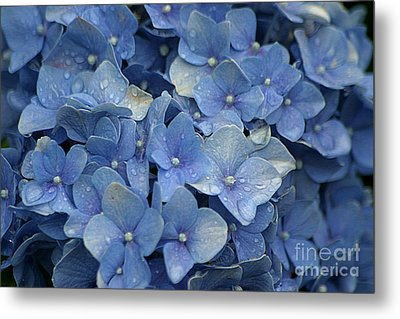 Blue Over You With Tears Metal Print