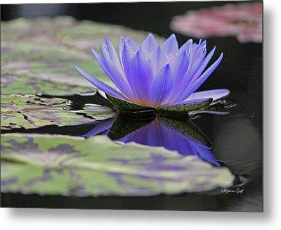 Blue Purple Dreams Metal Print by Suzanne Gaff