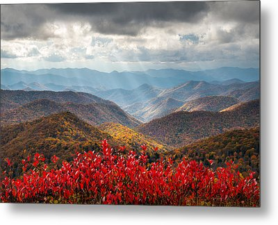 Blue Ridge Parkway Fall Foliage - The Light Metal Print by Dave Allen