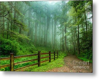 Blue Ridge Parkway - Foggy Country Road And Trees II Metal Print